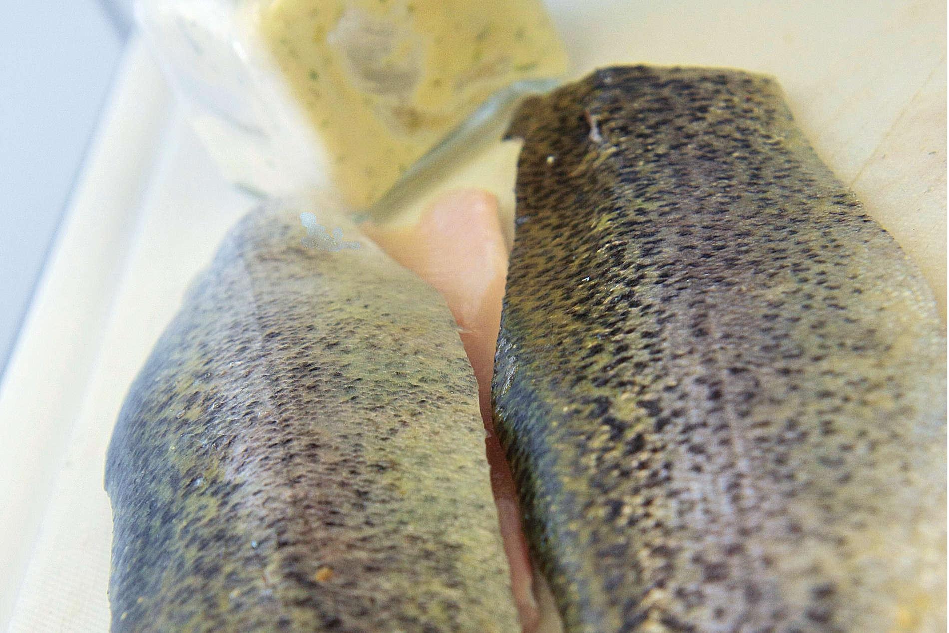 frischfisch-tk